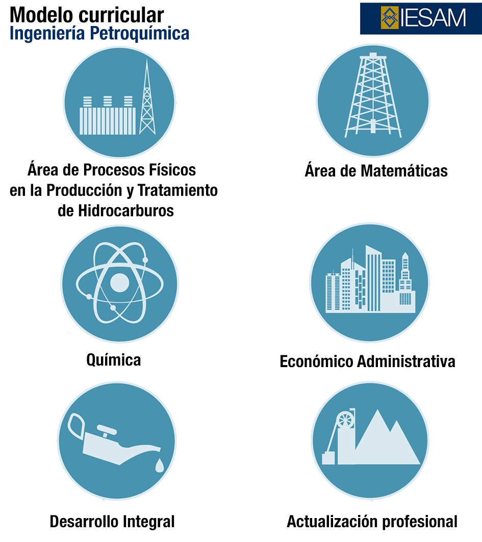 mapa-curricular-ingenieria-petroquimica-universidad-anglo---iesam-coatzacoalcos