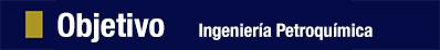 objetivos-ingeniería-petroquímica-coatzacoalcos-anglo-mexicano