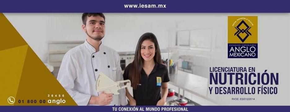 instituto de estudios superiores anglo mexicano licenciatura en nutrición coatzacoalcos
